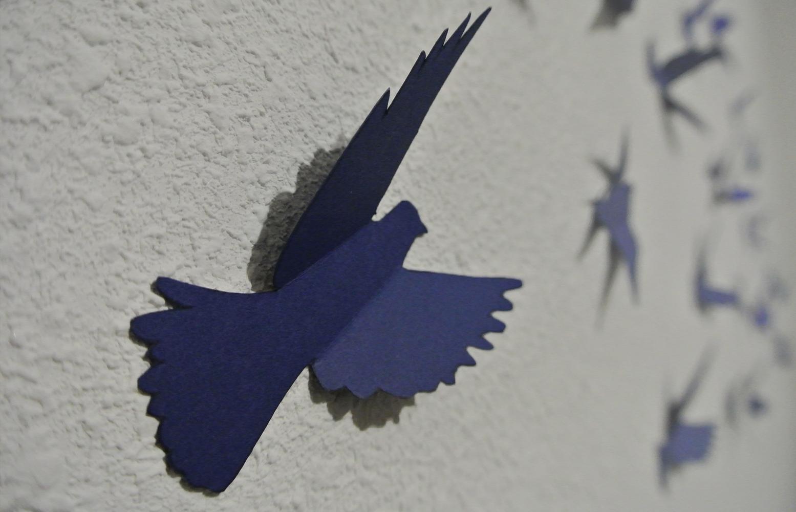 bird wall 1